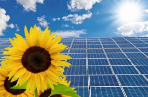 New solar cells and sunflow